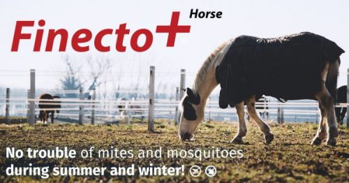 Finecto+ now also successfully used for horses, after chickens and birds!