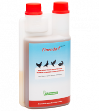 Finendo Cox & Worm (chickens – birds – rabbits)