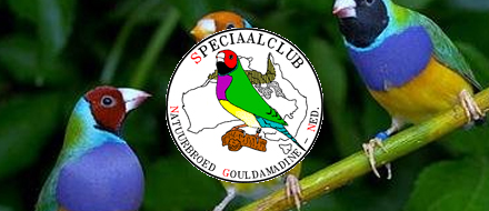 Dutch Gouldian Club